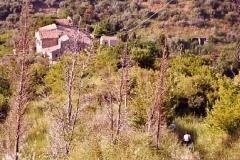 borgo_2003014