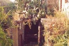 borgo_2003021