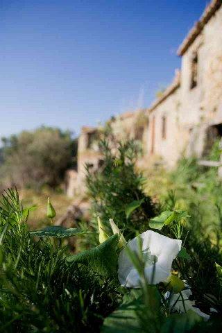 borgo_2007013