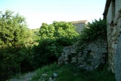 radici_memoria2003013