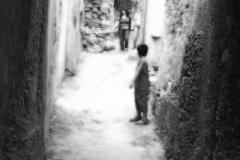 radici_memoria201133